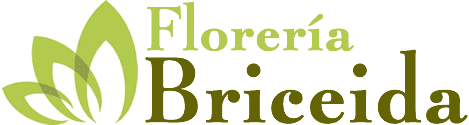 Floreria Briceida – Obregon Sonora